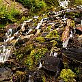 Vidae Falls by Adam Jewell