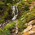 Vidae Falls Landscape by Adam Jewell