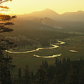 View At Dawn Of The Tuolumne River by Phil Schermeister