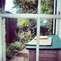 View From My Window, #cambridge #view by Abdelrahman Alawwad