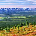 View From Ogilvie Ridge Lookout by Robert Postma