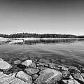 View From The Boat Ramp by Douglas Barnard
