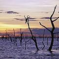 View Of Lake Kariba At Sunset by Axiom Photographic