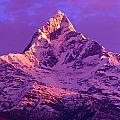 View Of Machhapuchhare At Sunrise From by Bilderbuch