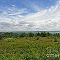 View Of Maine Bay by Meandering Photography