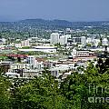 View Of Portland Oregon From Pittock Mansion  by Sherry  Curry