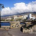 View Of Puerto De La Cruz From Plaza De Europa by Fabrizio Troiani
