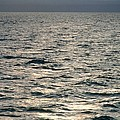 View Of Sunlit Waves On Open Water by Kaj R. Svensson
