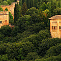 View Of The Alhambra In Spain by Greg Matchick