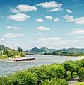 View Over River Rhine by Elisabeth Schmitt