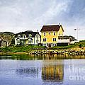 Village In Newfoundland by Elena Elisseeva