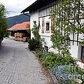 Village In Tyrol by Elzbieta Fazel
