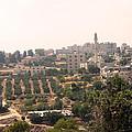 Village Of Beitin by Munir Alawi