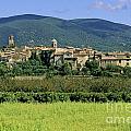 Village Of Lourmarin. Luberon. Vaucluse by Bernard Jaubert