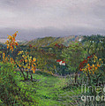 Vineyard Path by Leah Wiedemer