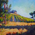 Vineyards At Sarver by Margaret  Plumb