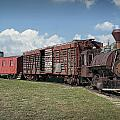 Vintage 1880 Locomotive Train No.1027 by Randall Nyhof