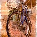 Vintage  Bicycle by Debra and Dave Vanderlaan