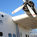 Vintage Boac British Overseas Airways Corporation Speedbird Flying Boat . 7d11279 by Wingsdomain Art and Photography