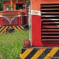 Vintage Diesel Engines by Yali Shi