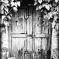 Vintage Door by Bryan Bolvito
