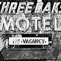 Vintage Florida Motel by David Lee Thompson