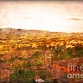 Vintage  Landscape Florence Italy by Femina Photo Art By Maggie