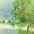 Vintage Landscape by MotHaiBaPhoto Prints