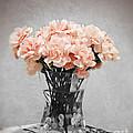Vintage Pink by Traci Cottingham