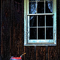 Vintage Porch Window And Gas Can by Kathy Clark