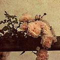 Vintage Roses by Georgiana Romanovna