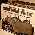 Vintage Wheat by David Lee Thompson