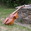 Viola da Gamba and a Wishing-well