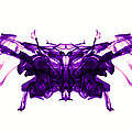 Violet Abstract Butterfly by Sumit Mehndiratta