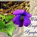 Violet Greeting Card  Sympathy by Debbie Portwood