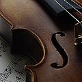 Violin by Nichola Evans