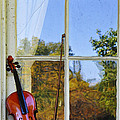 Violin On A Window Sill by Bill Cannon