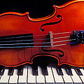 Violin On Piano Keys by Garry Gay