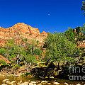 Virgin River by Greg Norrell