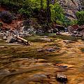 Virgin River Zion by Jonathan Davison