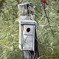 Virginia Birdhouse by Duane Wolford