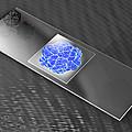 Virus On Microscope Slide by Laguna Design