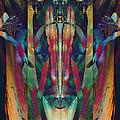 Visage Of The Alchemist by David Kleinsasser