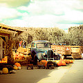 Visit The Pumpkin Patch by Connie Dye