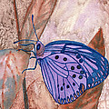 Visualization Butterfly by Charlotte Garrett