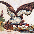 Vulture Attacking A Snake by Granger