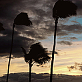 Wa'alaea Sunrise by Paulette B Wright