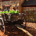 Wagon Of Flowers by Andrew Dickman