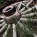 Wagon Wheel by Gray  Artus