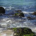 Waimea Bay 2 by Jessica Velasco